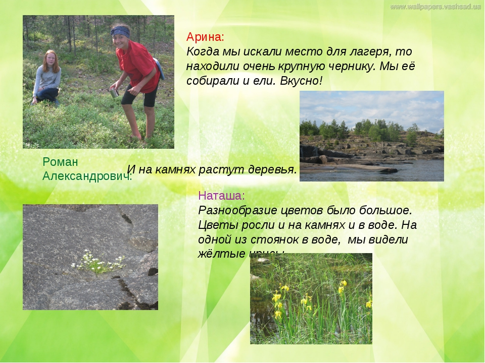 Наташа: Разнообразие цветов было большое. Цветы росли и на камнях и в воде. Н...