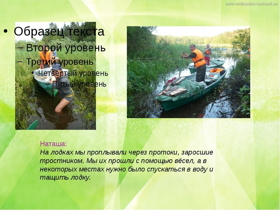 Наташа: На лодках мы проплывали через протоки, заросшие тростником. Мы их про...