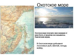 Охотское море В Охотском море добывают лососевых рыб, минтай, сельдь мойву. О