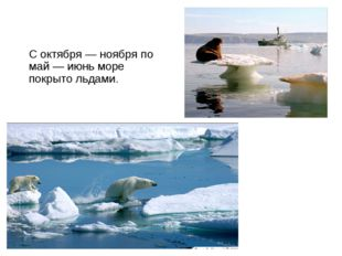 Чуко́тское мо́ре С октября — ноября по май — июнь море покрыто льдами.