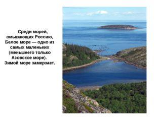 Бе́лое мо́ре Среди морей, омывающих Россию, Белое море — одно из самых малень