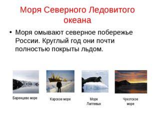 Моря Северного Ледовитого океана Моря омывают северное побережье России. Круг