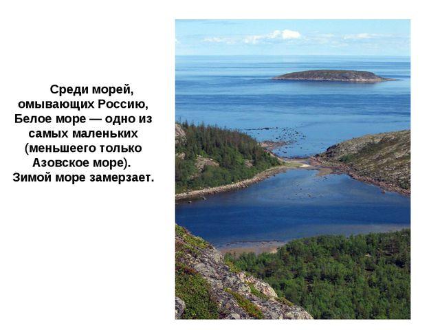 Бе́лое мо́ре Среди морей, омывающих Россию, Белое море — одно из самых малень...