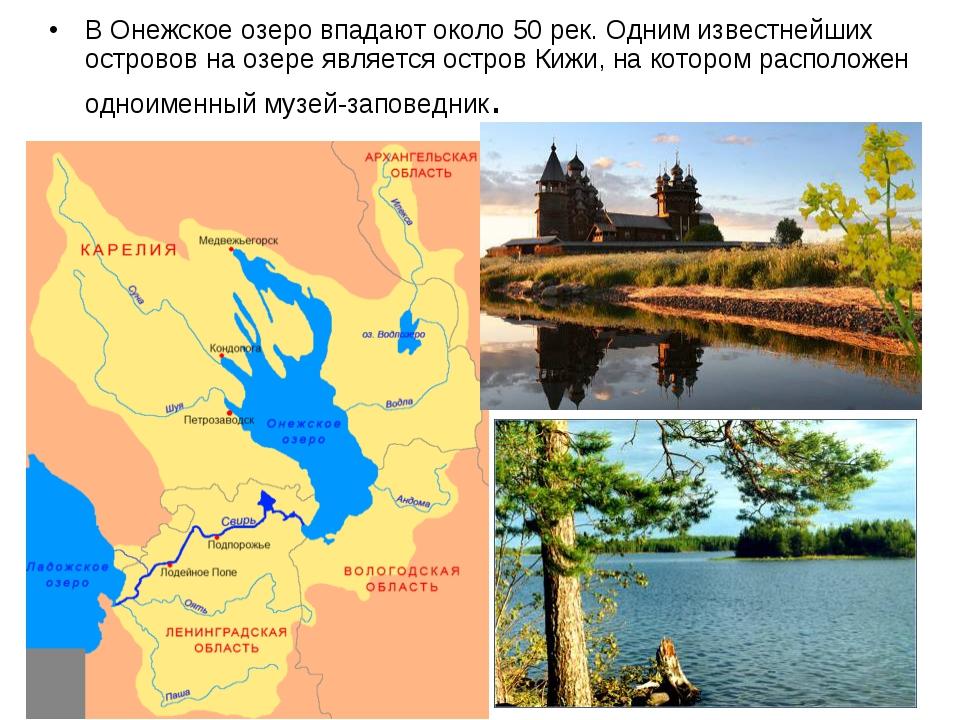 В Онежское озеро впадают около 50 рек. Одним известнейших островов на озере я...