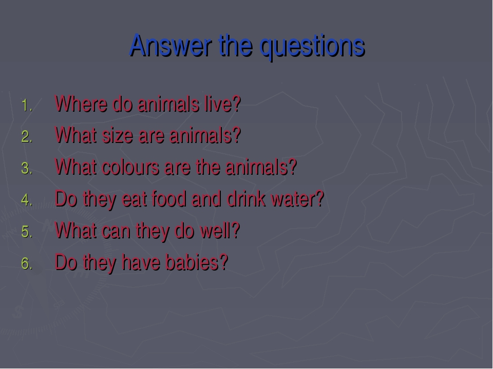 Answer the questions Where do animals live? What size are animals? What colou...
