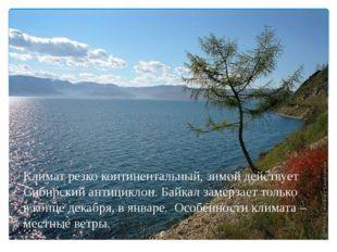 Климат резко континентальный, зимой действует Сибирский антициклон. Байкал з