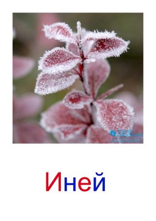 C:\Users\Андрей\Desktop\картинки к уроку\явления природы\иней.jpg