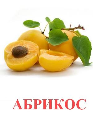C:\Users\Андрей\Desktop\картинки к уроку\фрукты\абрикос.jpg