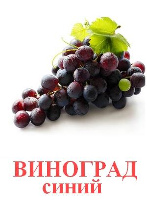 C:\Users\Андрей\Desktop\картинки к уроку\фрукты\виноград синий.jpg