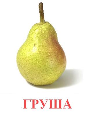 C:\Users\Андрей\Desktop\картинки к уроку\фрукты\груша.jpg