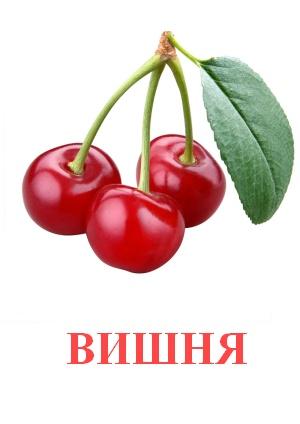 C:\Users\Андрей\Desktop\картинки к уроку\фрукты\вишня.jpg