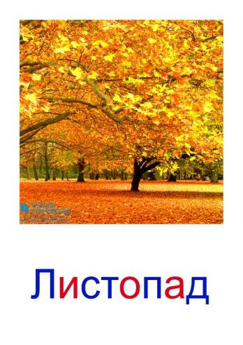 C:\Users\Андрей\Desktop\картинки к уроку\явления природы\листопад.jpg