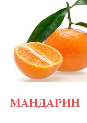 C:\Users\Андрей\Desktop\картинки к уроку\фрукты\мандарин.jpg