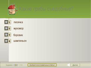 Далее 3 Задание 1 бал. Выберите все правильные ответы! Какие грибы съедобные?