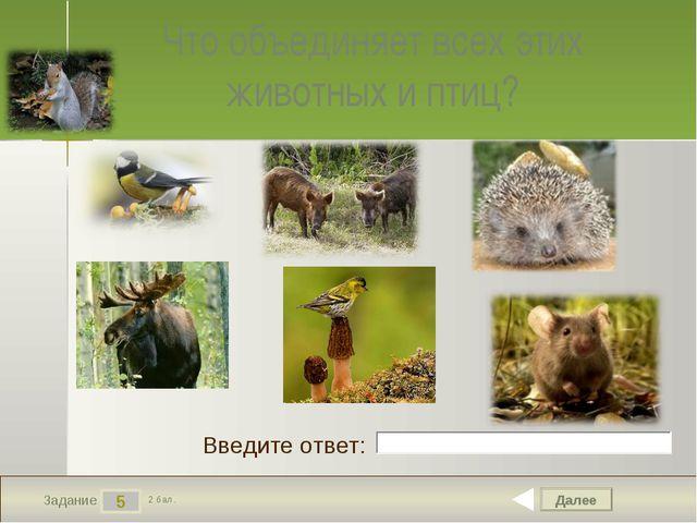 Далее 5 Задание 2 бал. Введите ответ: Что объединяет всех этих животных и птиц?
