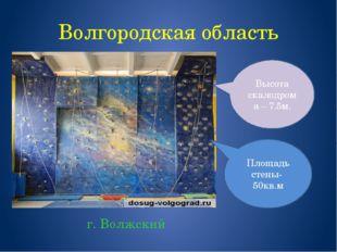 Волгородская область г. Волжский Площадь стены- 50кв.м Высота скалодрома – 7.