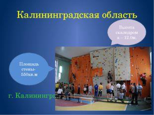 Калининградская область г. Калининград Площадь стены- 550кв.м Высота скалодро