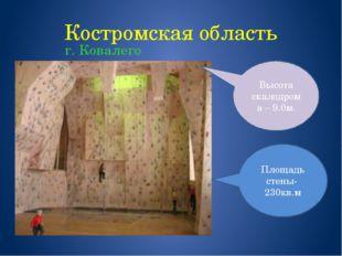 Костромская область г. Ковалего Площадь стены- 230кв.м Высота скалодрома – 9.