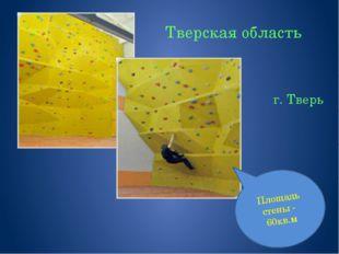 Тверская область г. Тверь Площадь стены - 60кв.м