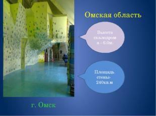 Омская область г. Омск Площадь стены- 240кв.м Высота скалодрома - 6.0м.