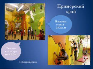 Приморский край г. Владивосток Высота скалодрома - 9.0м. Площадь стены- 350кв.м