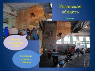 Рязанская область г. Рязань Высота скалодрома - 9.5м. Площадь стены - 100кв.м
