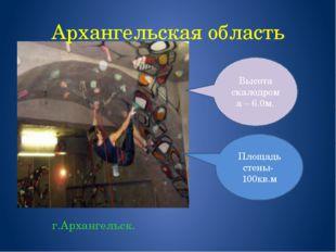 Архангельская область г.Архангельск. Площадь стены- 100кв.м Высота скалодрома