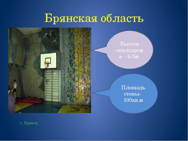 Брянская область г. Брянск Площадь стены- 100кв.м Высота скалодрома – 6.5м.