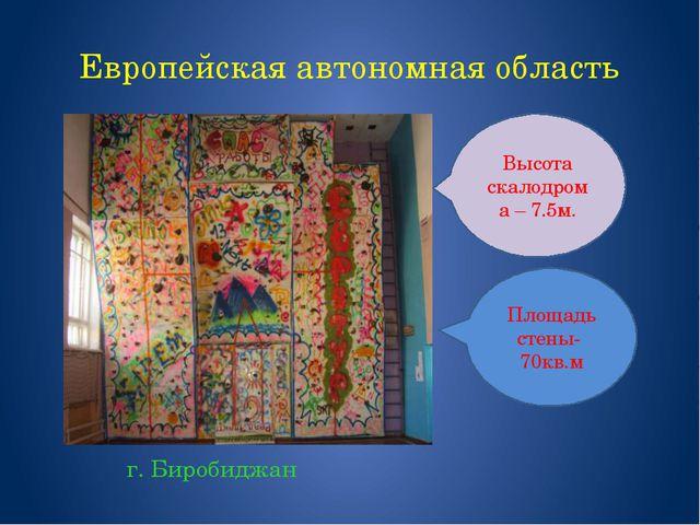 Европейская автономная область г. Биробиджан Площадь стены- 70кв.м Высота ска...