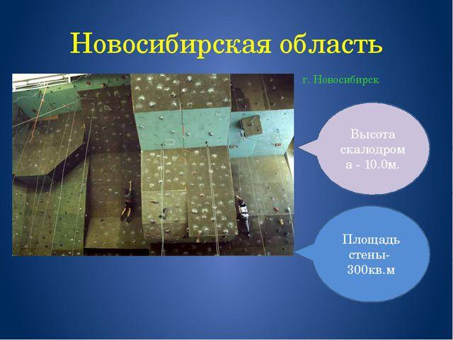 Новосибирская область г. Новосибирск Высота скалодрома - 10.0м. Площадь стены...