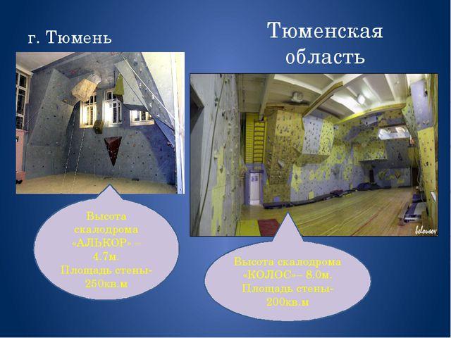 Тюменская область г. Тюмень Высота скалодрома «КОЛОС»– 8.0м. Площадь стены-20...
