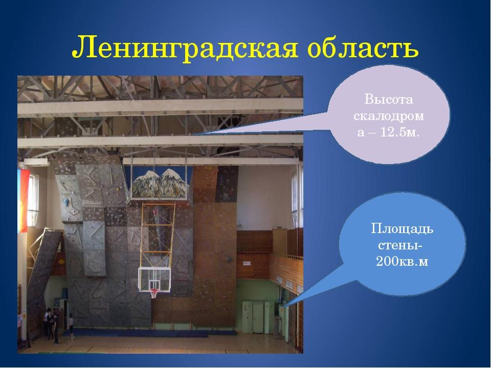 Ленинградская область Площадь стены- 200кв.м Высота скалодрома – 12.5м.