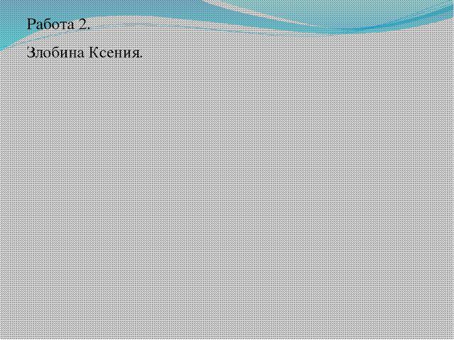 Работа 2. Злобина Ксения.