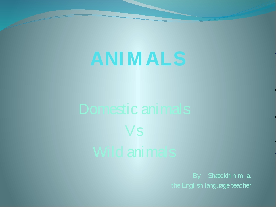 ANIMALS Domestic animals Vs Wild animals By Shatokhin m. a. the English langu...