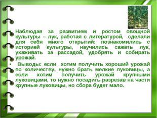 Наблюдая за развитием и ростом овощной культуры – лук, работая с литературой,