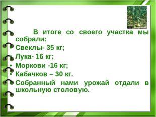 В итоге со своего участка мы собрали: Свеклы- 35 кг; Лука- 16 кг; Моркови -1