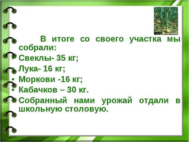 В итоге со своего участка мы собрали: Свеклы- 35 кг; Лука- 16 кг; Моркови -1...