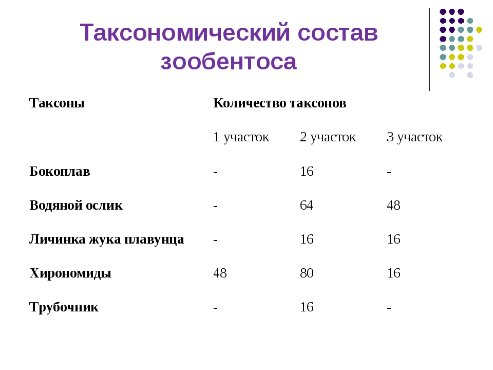 Таксономический состав зообентоса Таксоны Количество таксонов 1 участок2 у...