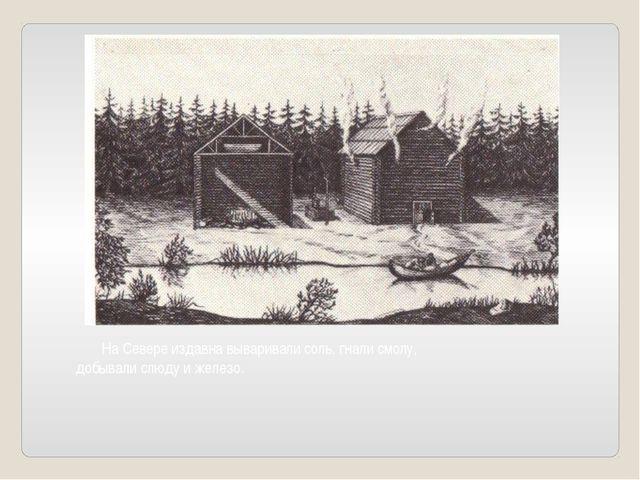 На Севере издавна вываривали соль, гнали смолу, добывали слюду и железо.