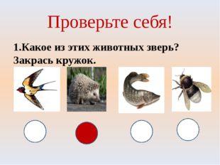 Проверьте себя! 1.Какое из этих животных зверь? Закрась кружок.