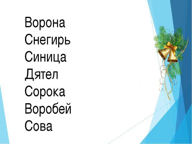 Ворона Снегирь Синица Дятел Сорока Воробей Сова