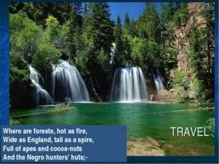 TRAVEL Where are forests, hot as fire, Wide as England, tall as a spire, Full