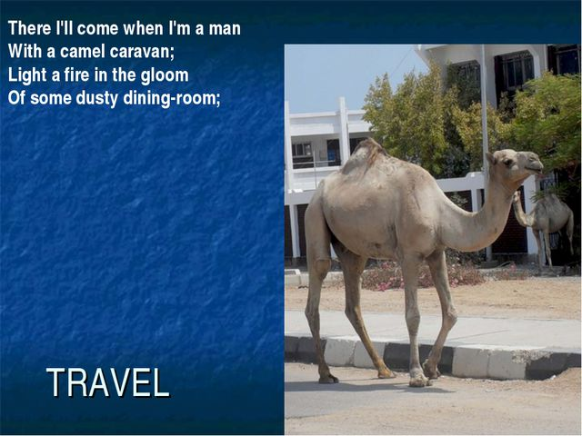 TRAVEL There I'll come when I'm a man With a camel caravan; Light a fire in t...