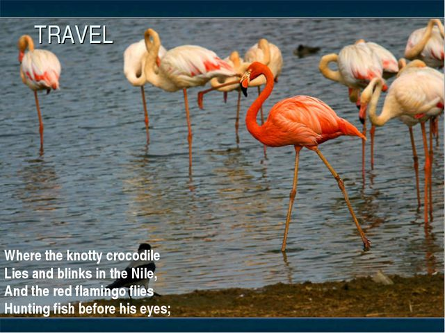 TRAVEL Where the knotty crocodile Lies and blinks in the Nile, And the red fl...