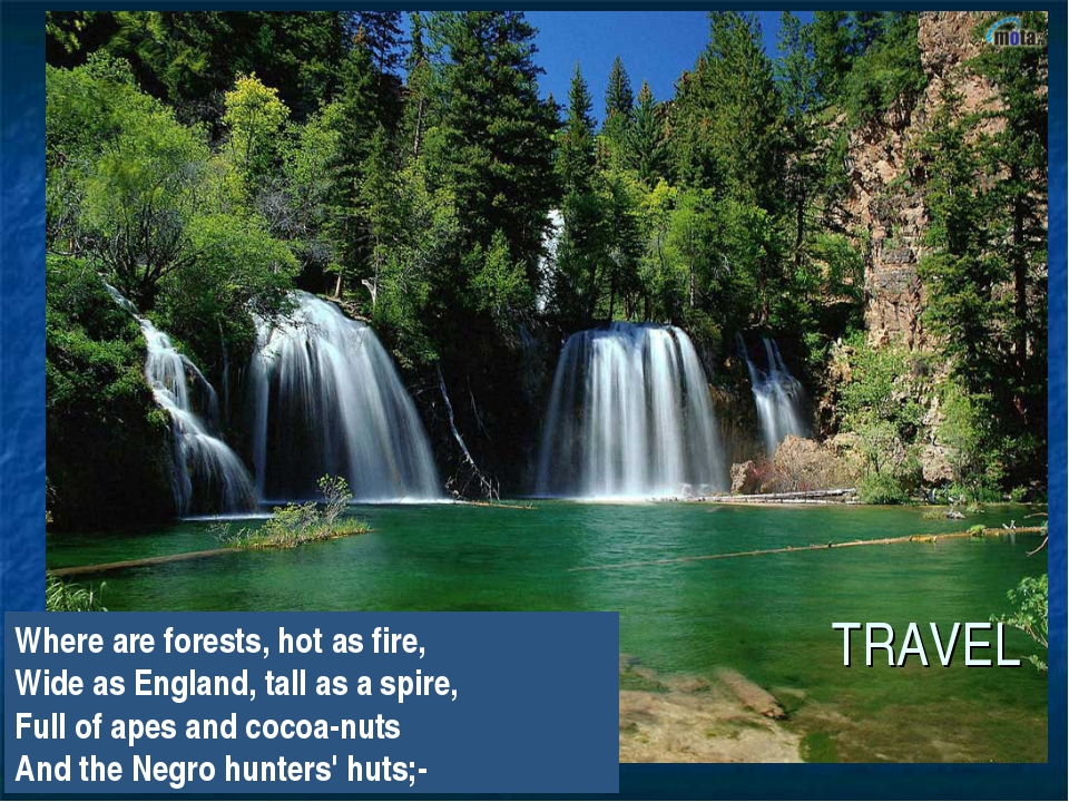 TRAVEL Where are forests, hot as fire, Wide as England, tall as a spire, Full...