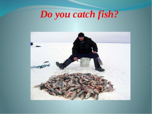Do you catch fish?
