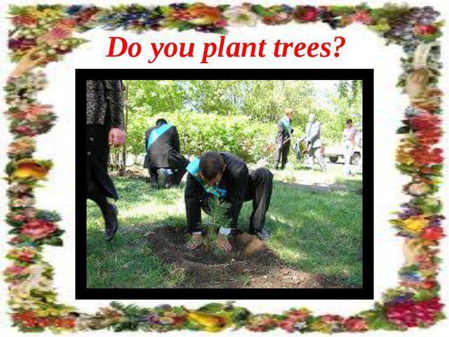 Do you plant trees?