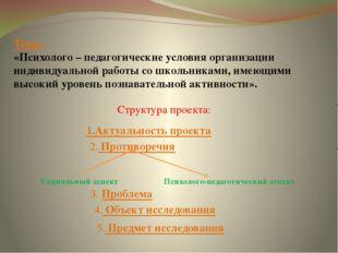 Тема: «Психолого – педагогические условия организации индивидуальной работы