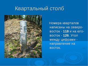 Квартальный столб Номера кварталов написаны на северо-восток -118и на юго-в