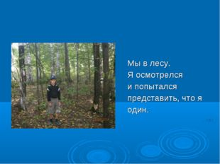 Мы в лесу. Я осмотрелся и попытался представить, что я один.